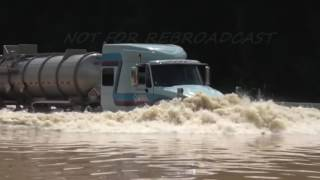 "Download Louisiana Flooding ""The Cajun Navy"" seeing tractor trailer to high ground Mp3 and Videos"