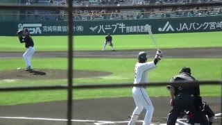【侍JAPAN】 澤村拓一 VS 長野久義 坂本勇人 真剣勝負! 2013 WBC 合宿.