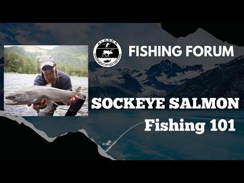 Sockeye Salmon Fishing 101 (online Forum)