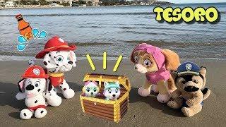 Patrulla canina español y paw patrol bebes: tesoro en la playa! Nuevos videos de juguetes