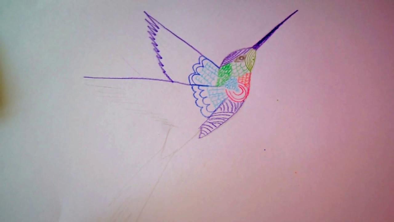 Kolibri Zeichnen I Vogel Malen How To Draw A Humming Bird