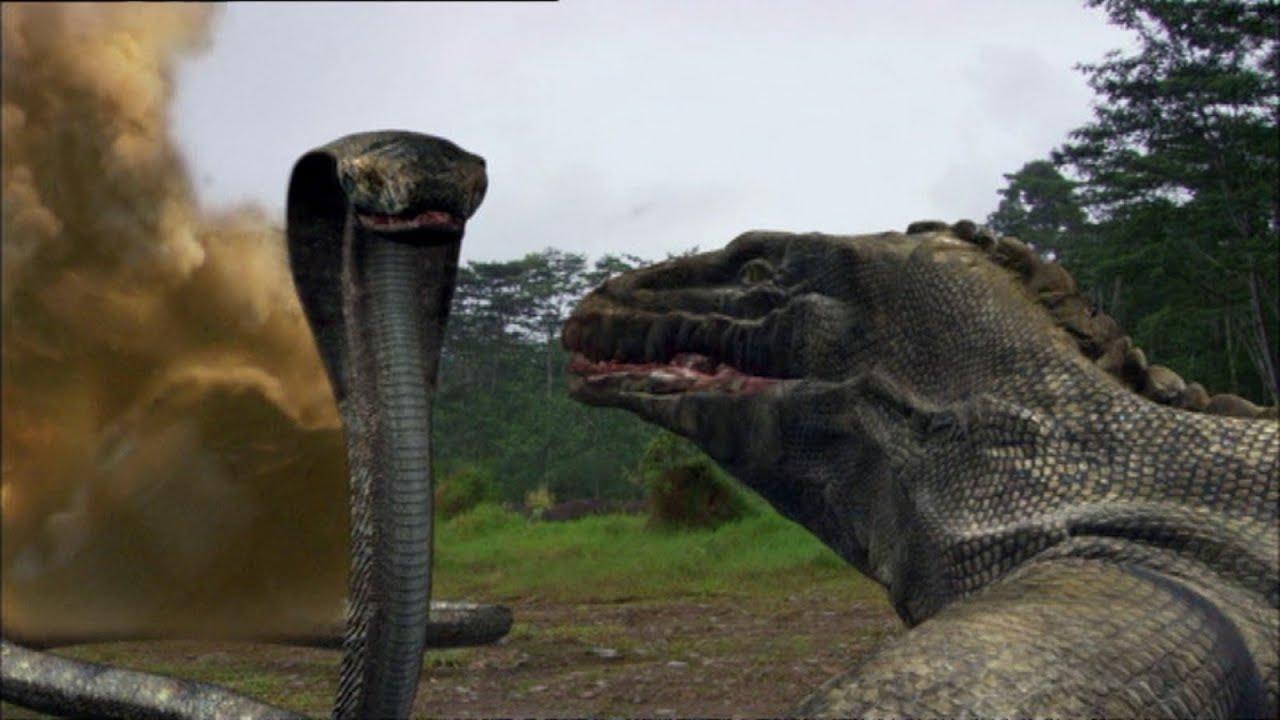 Image Result For Komodo