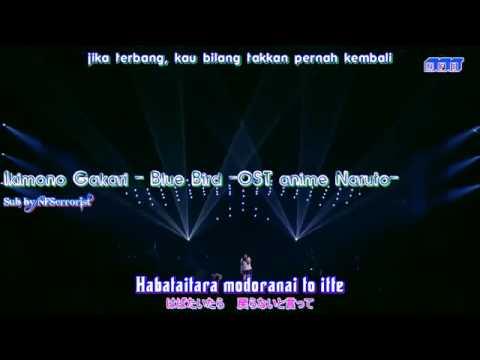 ikimono gakari blue bird live  sub indo