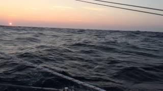The Sail II