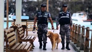 Gambar cover Centro Regional de Adiestramiento Canino 2013, Imagen 7 Producciones