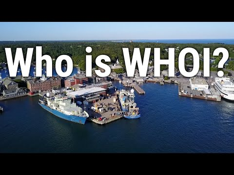Who is WHOI?