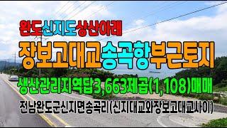 20-214[완도지역토지][신지도송곡항부근묵답]신지대교…