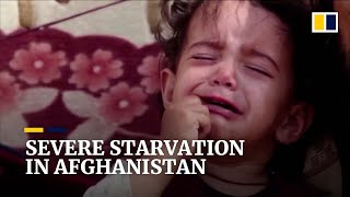 Download 95 per cent of Afghans face starvation due to ongoing drought and poor economy
