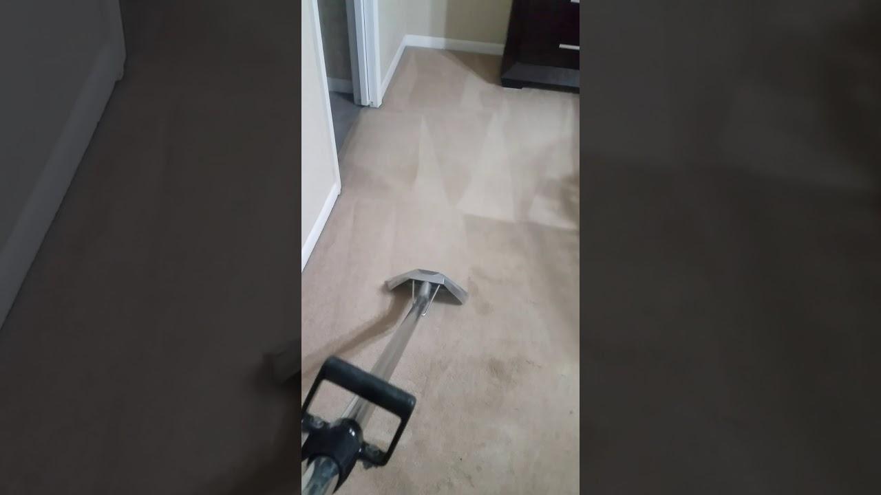 Fresh Green Carpet Cleaning O Fallon Il