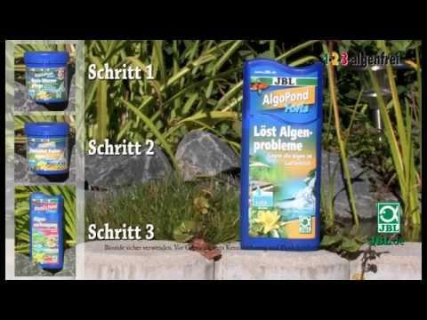 Jbl 1 2 3 Algenfrei Teichpflege Mit Garantieversprechen Youtube