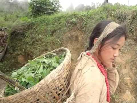 Nepali culture and tradition