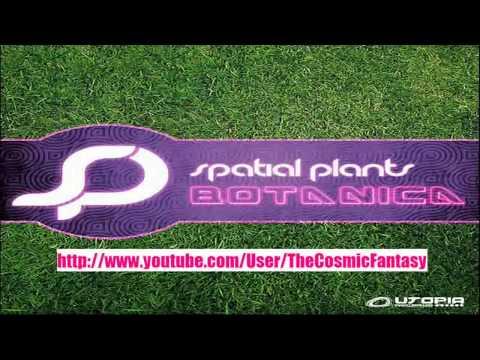 Midnight Storm - Morning Drive (Spatial Plants Remix)