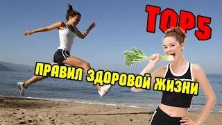 видео Правила здоровой жизни