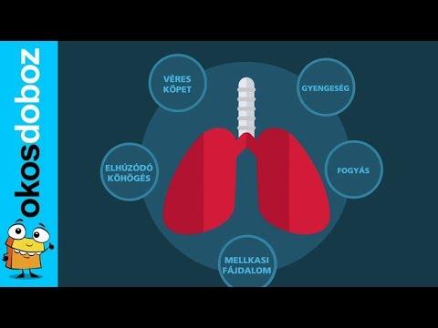 tbc tbc 2 fogyás