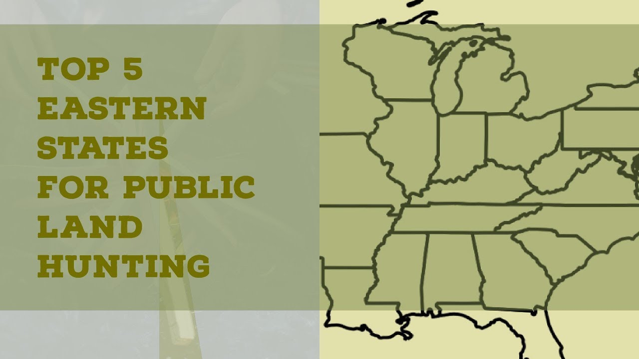 Top 5 eastern states for deer do you agree michigan for Best states for hunting and fishing