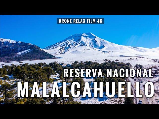 Malalcahuello y Centro de Ski Corralco en 4K desde el aire