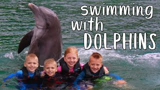 Swimming With Dolphins & Feeding Sea Turtles at Dolphin Quest!!