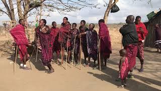 Dans Masai intr-un sat langa Mikumi