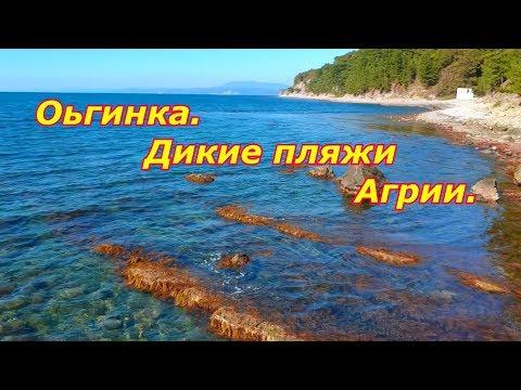 Ольгинка/Дикие пляжи Агрии