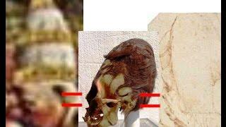 2116 Mysterious Painting at Santa Maria Maggioreサンタ・マリア・マッジョーレの奇妙な絵画+雪かUFOか+ダビンチとの不思議な関係byはやし浩司