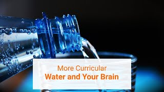 Importance of Drinking Water for The Brain | Learning | More Curricular |