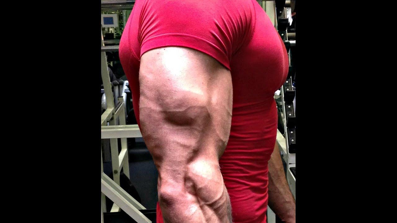 Mon Top 5 des exercices pour les triceps - YouTube dbd3f74dc2f