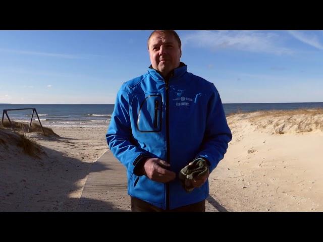 Vääna-Jõesuu ranna ligipääsetavuse parandamine 2019