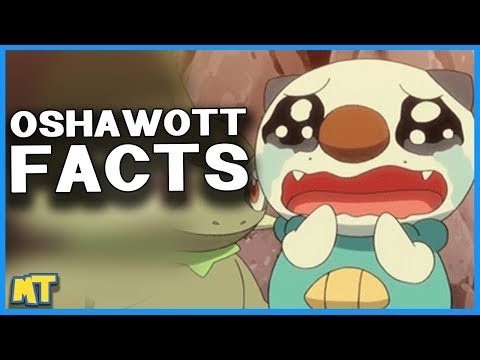 Top 5 Facts About Oshawott You Likely Didn't Know (Pokémon Facts) | Master Trainer