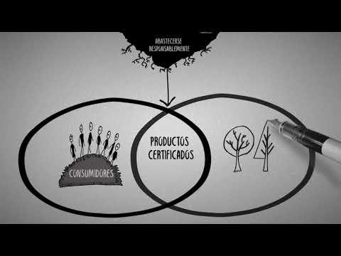 PEFC: la solución para proteger los bosques del planeta