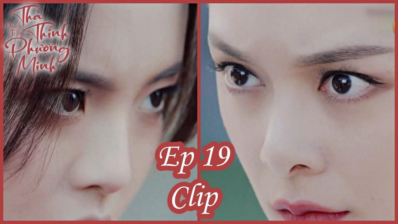 Clip | Thả Thính Phượng Minh - Tập 19 (Vietsub)| Bom Tấn Cổ Trang Xuyên Không 2020| Dương Siêu Việt