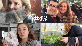 Mini Ev Turu, Pazar Alışverişi/Yerleştirmesi & Gratis Online Alışverişi | Haftalog 43