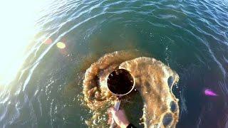 #Подводный пляжный #поиск со скубом в #Испании(Снова выбрался на #поиски с #мд, в этот раз нацепил #GoPro4 на голову, одел #неопреновый костюм, взял #скуб. Что..., 2016-08-09T15:01:19.000Z)