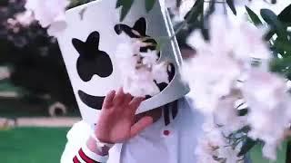Marshmello - Well Go [Official Video]