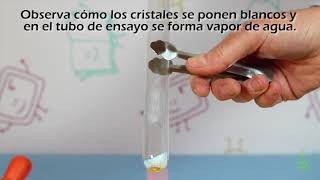 Calor que regresa.Experimentos de ciencias. (Divertiaula)