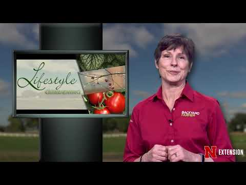 Backyard Farmer Presents Lifestyle Gardening 605