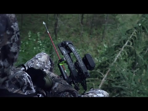 How To Hunt Deer In The Rain
