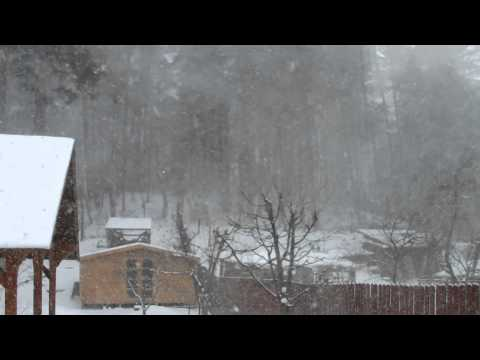 Blizzard in Vilnius on sunday afternoon 8 Feb. 2015