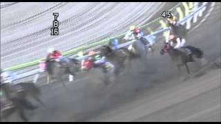 2013年東京スプリング盃
