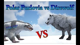 Playing as a direwolf ep 2 ark play as dino mod forming a polar purlovia vs direwolf and polarbear ark survival evolved cantex malvernweather