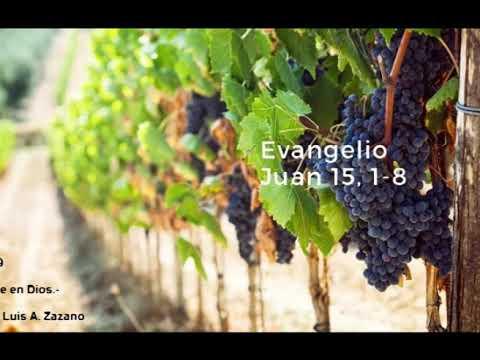 Evangelio del Día Miercoles 22 de Mayo - Lectura y Salmo del Dia