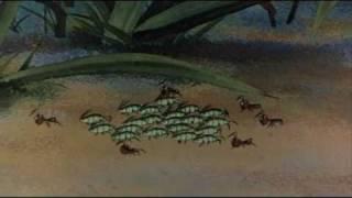Кино - Муравейник (Путешествие муравья)