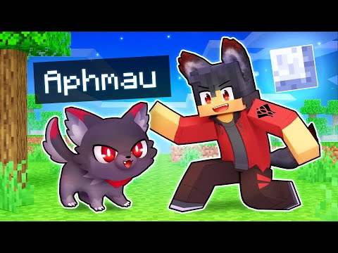 Playing As A LOYAL Werewolf KITTEN In Minecraft!