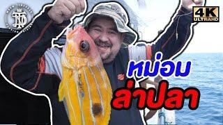 หม่อม ล่าปลา