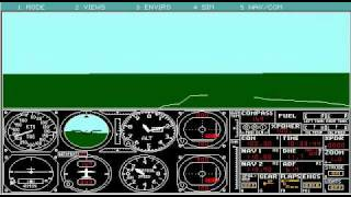 Microsoft Flight Simulator 4