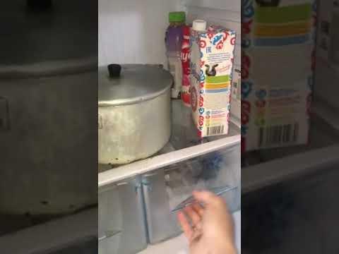 Обзор Холодильник Бирюса 133 К(L) из Сулпак