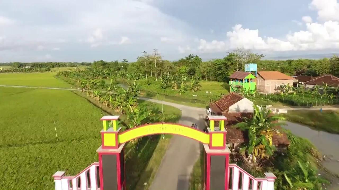 Desa Wisata Pemancingan Talun Dji Phantom 4 In 4k Tourist Villages And Fishing In Talun