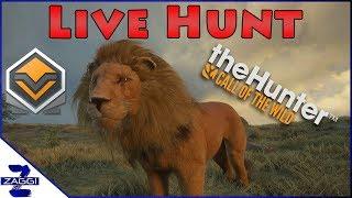 Diamond Lion Live Hunt TheHunter Call of the Wild