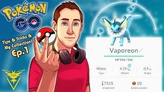 My Pokémon Collection + Tips & Tricks! | Pokémon GO Adventures Ep. 1 thumbnail