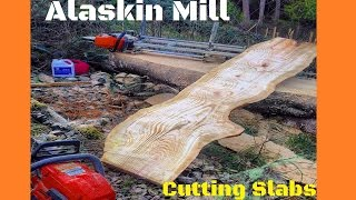 The Alaskan Mill: First time using the chainsaw mounted mill!!