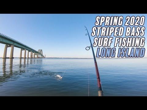 Striped Bass Surf Fishing - Spring 2020 - Long Island , New York